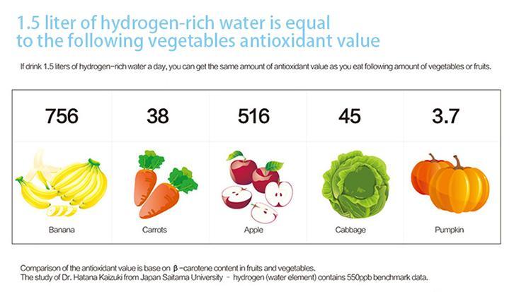 Rich Hydrogen Water 3
